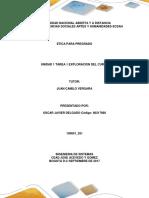 Plantilla de Información Tarea 1 -1