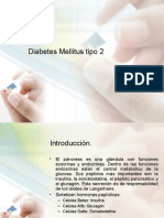16258116-S-Metabolico-Diabetes-Mellitus-tipo-2.ppt