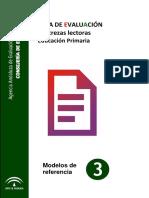 Guia de evaluacion de destrezas lectoras.pdf
