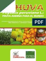 140620837217Physalis peruviana L. FRUTA ANDINA PARA EL MUNDO.pdf