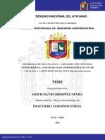 Ordoñez Neyra Erich David