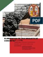 briqueta-parcial-3.docx