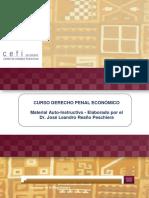 Manual Autoinstructivo Del Curso Sobre Derecho Penal Económico
