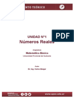 Documento Teorico - Unidad1 Numeros Reales 1