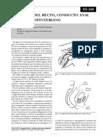 tsesenta.pdf