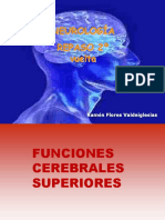 FUNCIONES CEREBRALES SUPERIORES.ppt