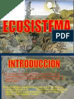 92630557-ECOSISTEMA.ppt