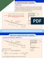 Longitud de Desarrollo.pdf