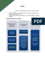 C3N4 _ R.pdf