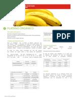 banano1.pdf