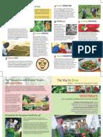 vegetables_general_new_s.pdf