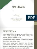 133223043 Enzim Lipase Ppt