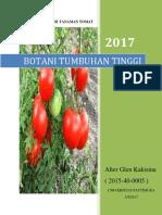 Deskripsi Tanaman Tomat
