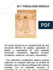 1ª clase anatomía