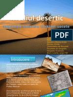 Mediul Desertic