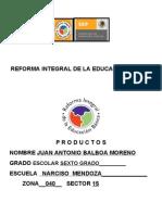 PRODUCTOS DE LA REFORMA INTEGRAL TOÑO