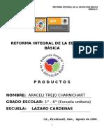 Productos Diplomado Modulo 1 Araceli Trejo Charnichart