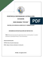 Informe de Beca_BP_Loma de Guayabillas