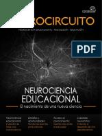 Neurocircuito Demo