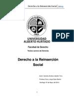 Derecho a La Reinsercion Social Univ Alberto Hurtado de Chile 32 Pgs