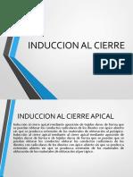 Induccion Al Cierre APICAL