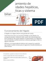Funcionamiento de Enfermedades Hepáticas Pancreáticas y Sistema