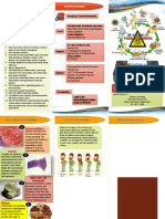 Food Poison Brochure