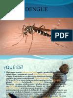 Tv Dengue 09