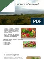 productos organicos