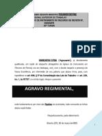 agravo_regimental_interno_trabalhista_tst_negativa_seguimento_recurso_revista_PN244.doc
