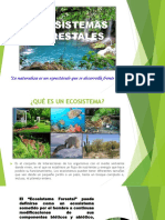 7. Ecosistema Forestal.pptx