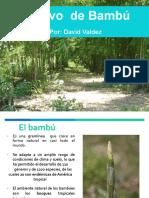 02 David Valdez El Cultivo Del Bambú 1.PDF
