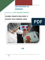 182060973-Informe-del-5-laboratorio-de-Microbiologia-Sanitaria-I.docx