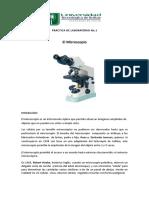 El Microscopio.doc