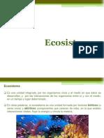 Ecosistemas e Interacciones 1º Medio 2017
