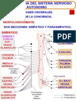 importancia SNA.pdf