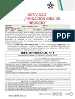 ACTIVIDAD - Determinación de La Idea de Negocio