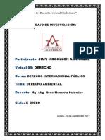 Foro Derecho Ambiental x Ciclo - 17