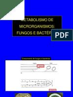 Teorica 7 - Metabolismo Fungos e Bactérias 2016 A