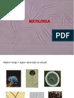 Apresentação 1 Introdução Aos Fungos ATUALIZADO