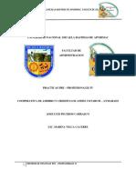 INFORME-DE-PPIV (1)