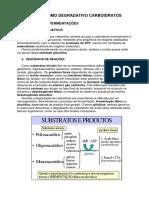 glicolise respiracao e via pentoses fosfato.pdf