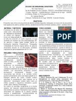 Resección de Aneurisma Carotideo