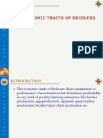 L-6economic Traits of Broilers