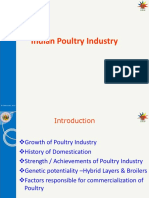 Theory 1Poultry Industry