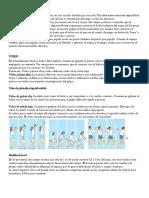 El Voleibol y Sus Medidas de Cancha