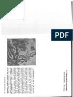 Texto Rosenfeld e Guinsburg (Romantismo e Classicismo)
