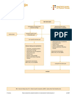 Dutch LBP Physiotherapy Flowchart