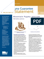 mountain pygmy-possum burramys action statement