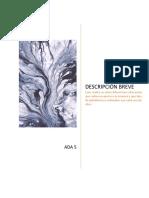 ADA-5-Informatica (1).docx
